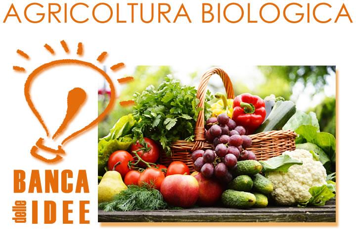 Idea_coltivazioni_ortofrutticole