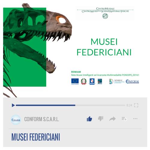 MUSEI FEDERICIANI