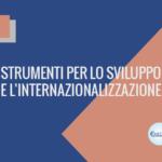 STRUMENTI PER LO SVILUPPO E L'INTERNAZIONALIZZAZIONE